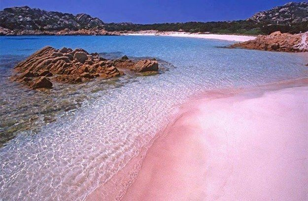 The Pink Beach, Sardinia, Italy | Community Post: 16 Absolutely Stunning Places To See In Your Lifetime