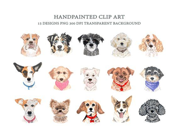 Dog Faces Clip Art Personal And Commercial Use Dog Breeds