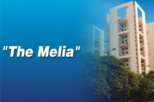 Silverglades The Melia Sohna sector 35 #silvergladesthemelia