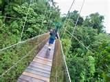 Dominica Aerial Tramway - Don't look down!