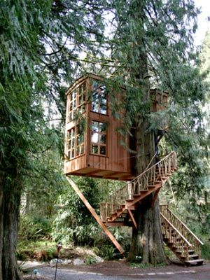 treehouse: Trees Homes, Spirals Stairca, Quiet Place, Guest House, Future House, Trees House, Windows, Kids, Treehouses