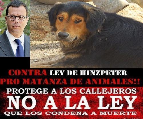 Contra la ley Hinzpeter pro matanza de animales