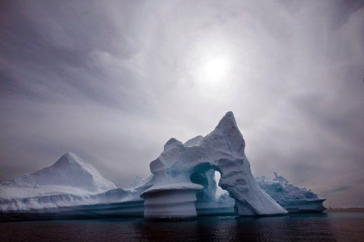 Musikprojekt zum Klimawandel: So klingen singende Eisberge – SPIEGEL ONLINE – Wissenschaft – Sigrun Muyakwa