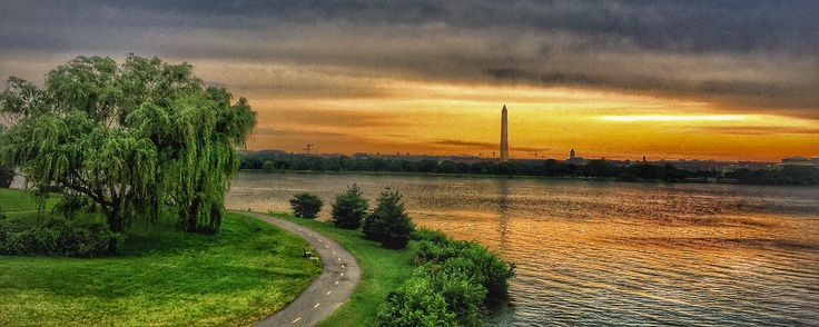 The sun coming up over lady bird johnson park and the washington monument in Washington DC.