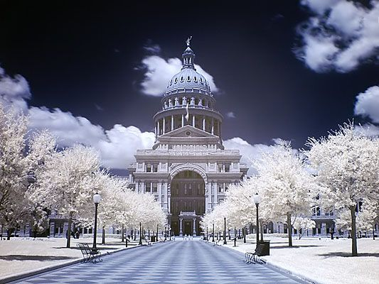 Austin, Texas in the snow.....a rare sight..... I've lived in Austin my whole life and I've never seen this. I definitely want to though!!!