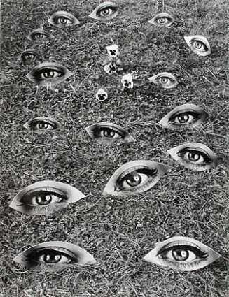 Jean Dieuzaide //  La terre voit, 1964