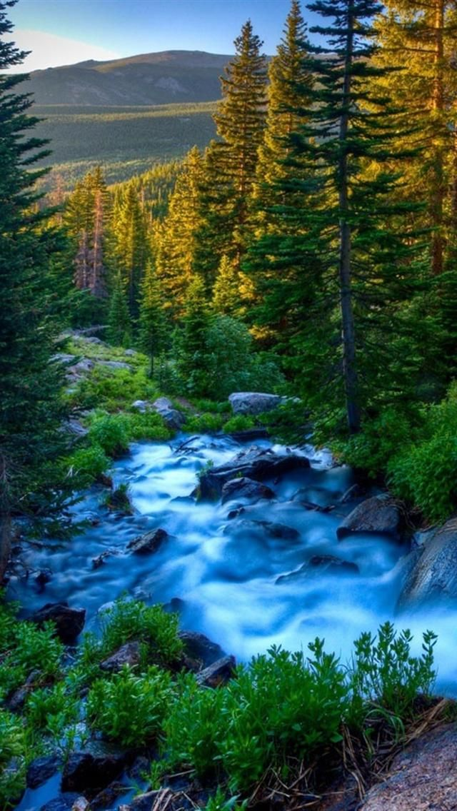 iphone5wallpapershd2818gjdho.jpg (640×1136) Nature