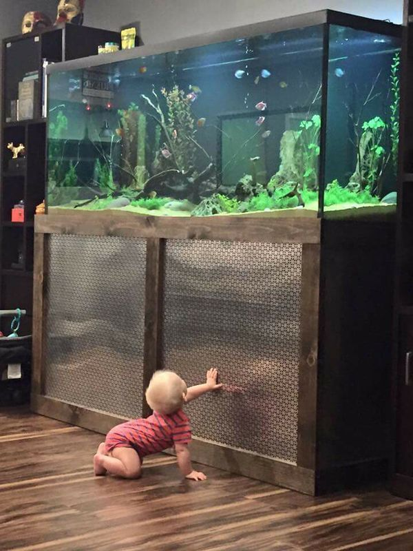 600 800 for Fish tank cabinet designs