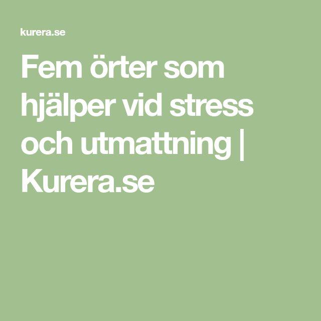 Fem örter som hjälper vid stress och utmattning   Kurera.se