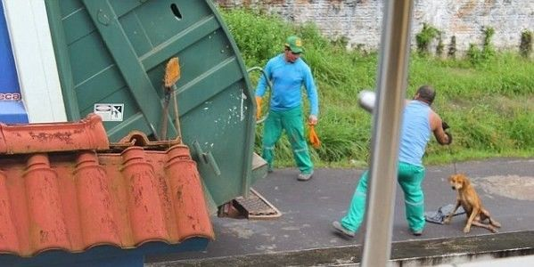 Petition!   Demand Justice for Injured Dog Murdered in a Trash Compactor!.  A refuse collector threw an injured with broken legs dog into a garbage truck where it was crushed alive. Sign the petition! (33057 signatures on petition)