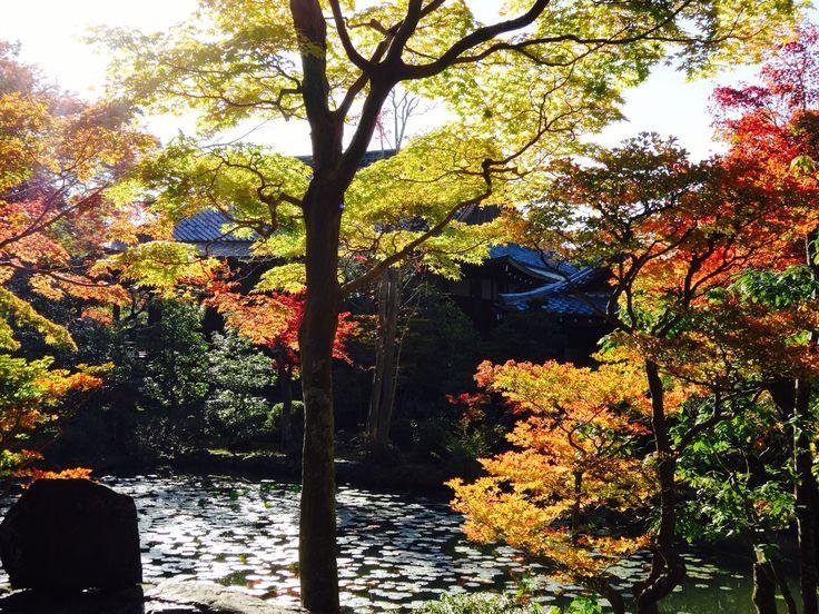 南禪寺 - Nanzenji Temple