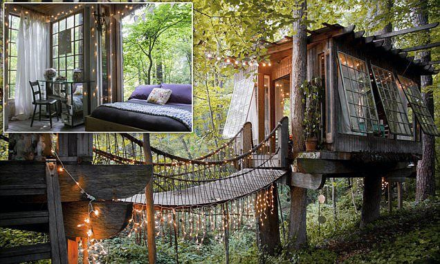 MAGICAL: You will NEVER want to leave this Peter Pan-style tree house on AirBnB