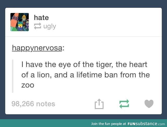 Bwhahaha oh my so funny!! Clean Funny Tumblr Text Post. Eye of tiger heart of lion ban from zoo