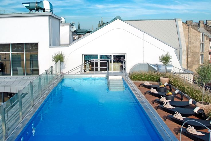Rooftop pool in the sunshine
