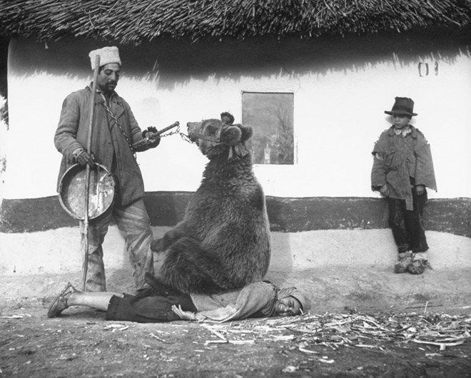 Em 1946, esta romena foi fotografada tentando curar o reumatismo com um urso sentado em suas costas