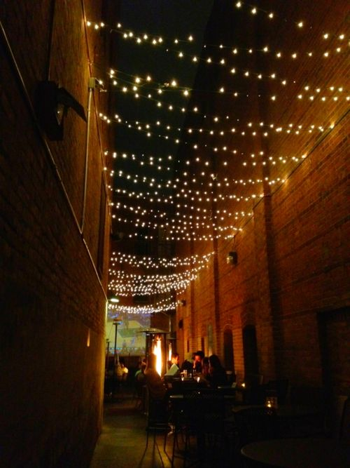 oooh - we could do this in our backyard by stringing lights across the patio from sunroom to sunroom