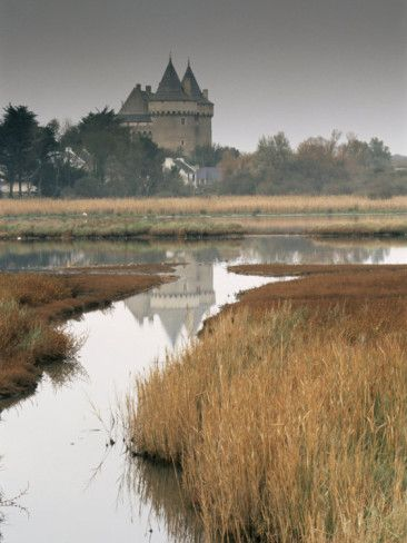 Chateau and Marshes of Suscinio -  Morbihan, Bretagne   http://www.pinterest.com/adisavoiaditrev/boards/
