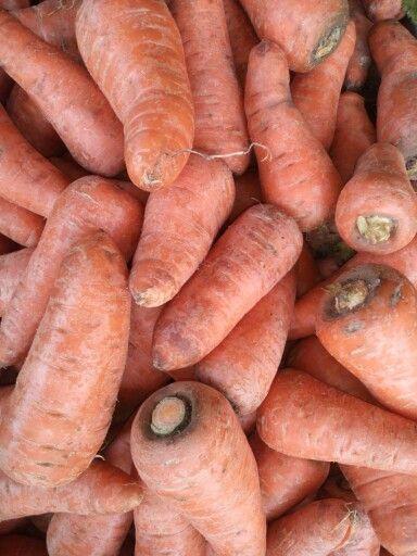 Carrots & nature