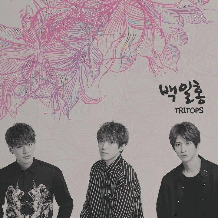 Tritops are back with a new single! South Korean band Tritops are back with a new single!  The group originally has four members -Ban Hyung-moon, Lee Woo-goon, Kim Il-goon, and Jang ...  #Tritops #Zinnia
