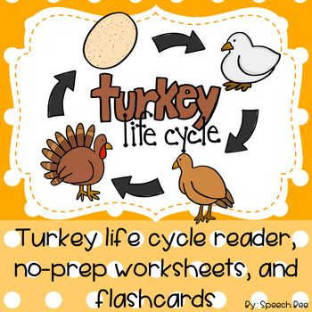 Help your students learn about the turkey life cycle with this adorable reader! 14 pages help students learn about stages of life for turkeys. Tracing pages help students label and learn names of the life cycle stages. Questions at the end help students demonstrate reading comprehension.