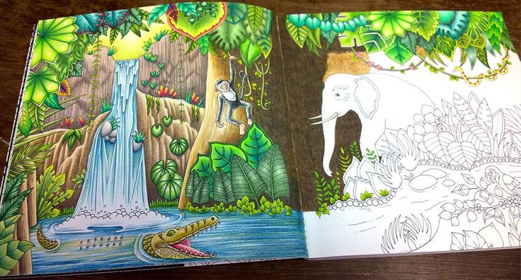 From Magical Jungle by Johanna Basford