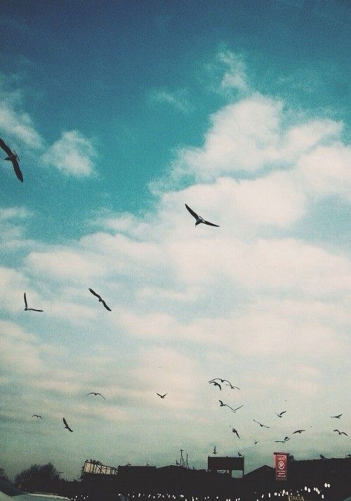 Ben bulutların içindeki saklı dünyayı seçtim.  Ab-ı Cehennem