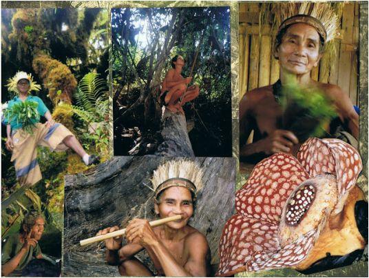 The Senio-Temiar People