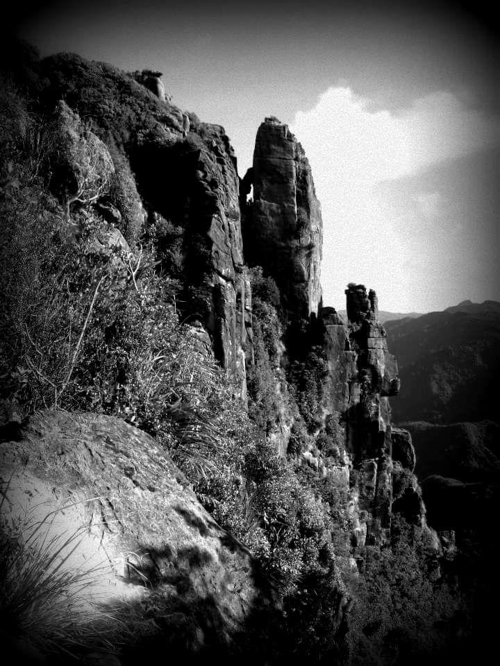 Pinnacel Coromandel New Zealand