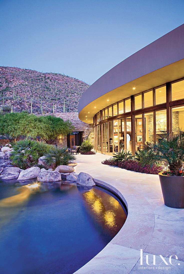 11 Best Arizona Pool Plants Images On Pinterest Pool