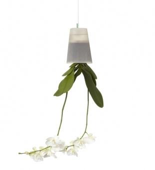hängender Blumentopf für Orchideen - durch das transparent Material bekommen die Luftwurzeln der Orchidee Licht