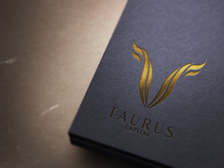 Taurus Capital finance company logo