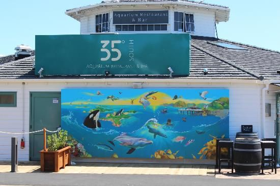35 Degree South Aquarium Restaurant & Bar: Colourful artwork outside the restaurant
