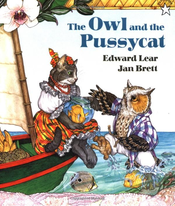 The Owl and the Pussycat: Edward Lear,Jan Brett