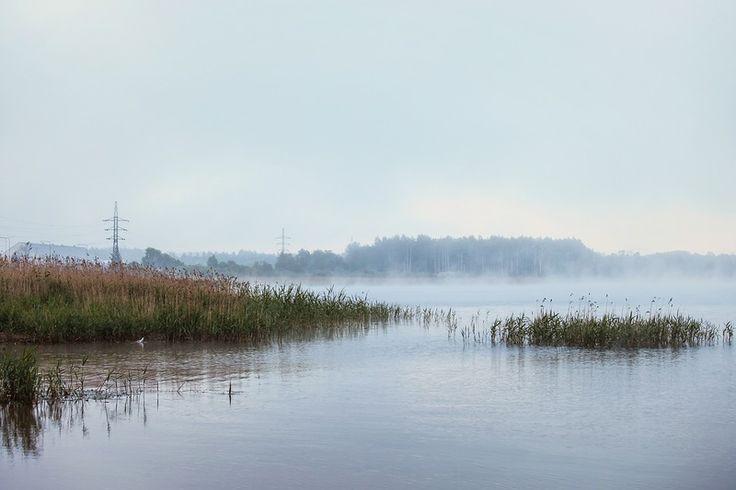 mysterious fog