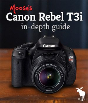 Canon Rebel T3i Tips for Beginners