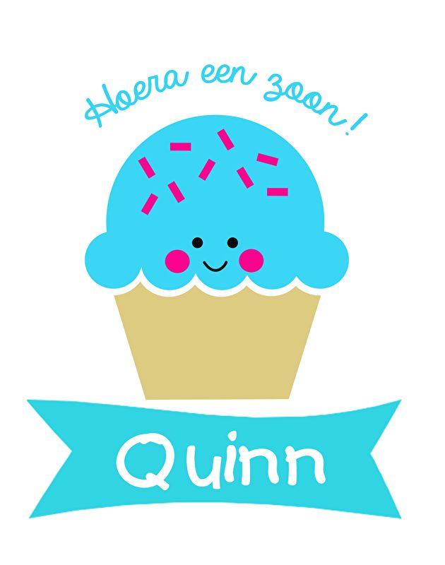 Geboortesticker type Quinn