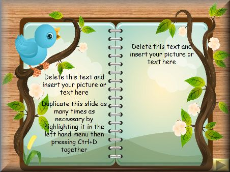 16 best Primary KS1 ideas images on Pinterest Elementary schools - new jungle powerpoint template