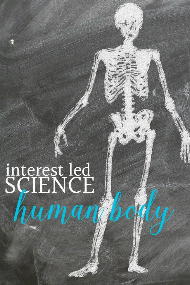 These interest led science human body study ideas and resources are a great way to foster independence in your homeschool.
