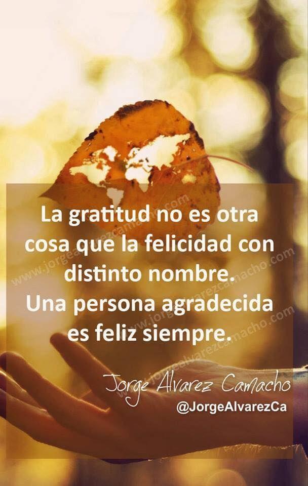 ️La gratitud no es otra cosa que la felicidad con distinto nombre.