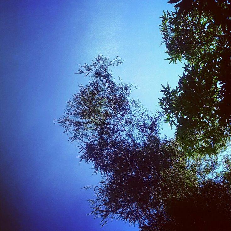 Sky #photography