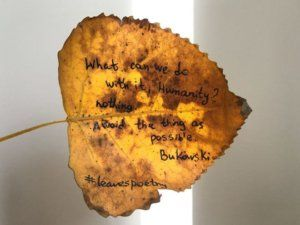 Un'idea creativa ed originale ha spinto Elena Zaharova, una giovane grafica di Brooklyn, New York, a scrivere a penna delle poesie sulle foglie autunnali della sua città, regalando un sorriso e delle piccole emozioni a tutti coloro che hanno avuto la fortuna di trovarne una e leggerne i versi