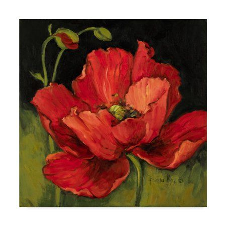 Trademark Fine Art ' Poppy Blossom' Canvas Art by Barbara Mock