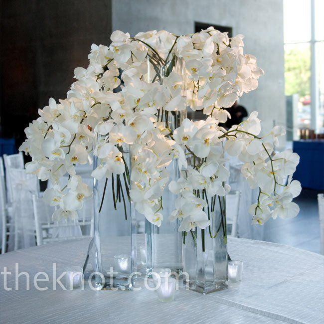Best white orchid centerpiece ideas on pinterest
