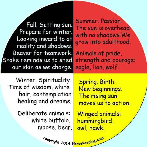 the native medicine wheel essay Native+american+medicine+wheel+earth | native medicine wheel (chosen for   medicine wheel of the lakota - the four directions postcard $110.
