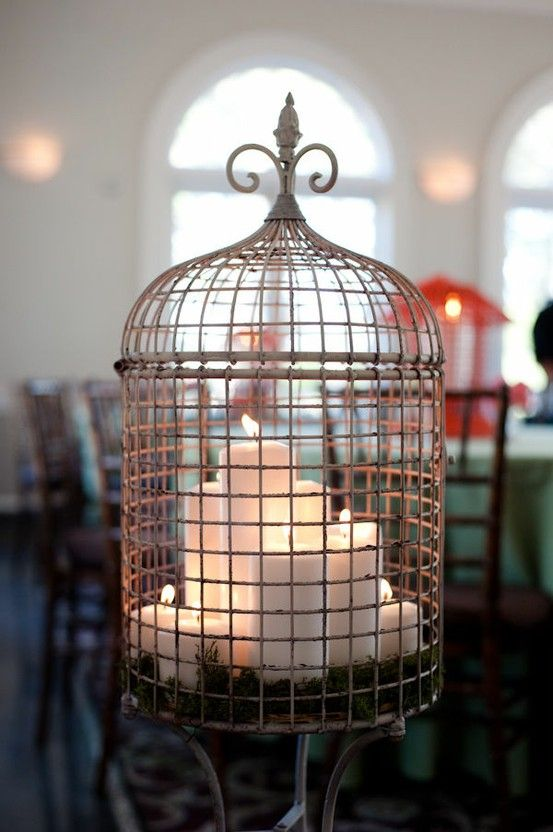 Used bird cages in home decor