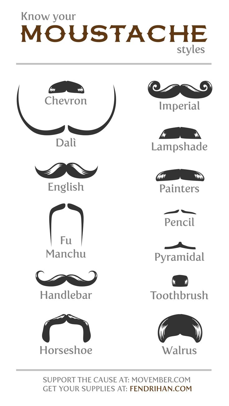 names for types of moustaches - Google Search