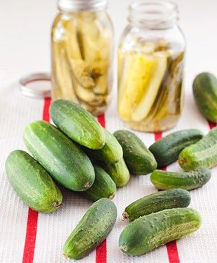 How to Grow Pickling Cucumbers