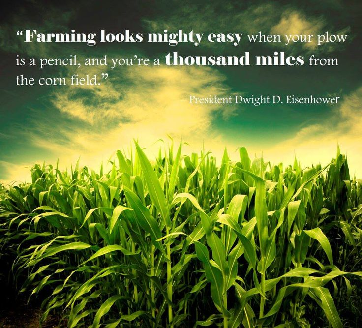 """Farming looks mighty easy when your plow is a pencil, and you're thousands miles from the corn field."" #Farming #agriculture #quote"