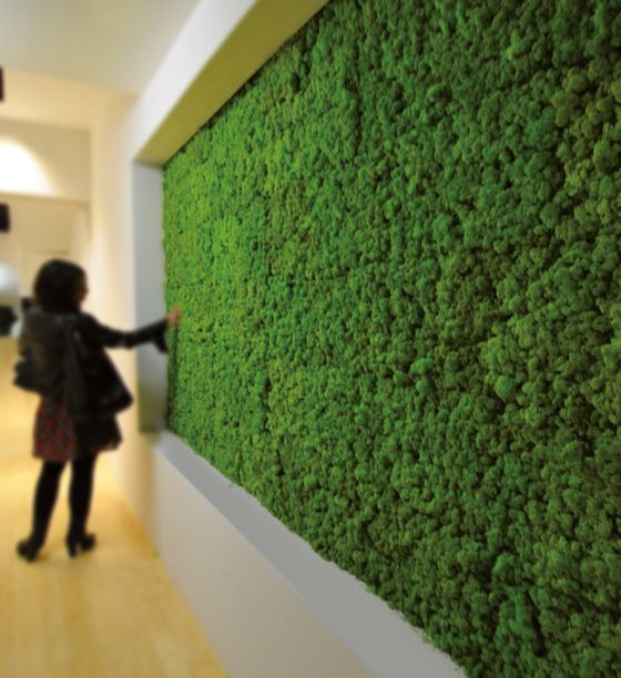 'BenettiMOSS', by Benetti stone. A panelised interior vertical garden product composed of stabilised-lichen embedded in a resin base, 'BenettiMOSS' regulates indoor moisture levels and cleanses the air of interiors. The lichen is extremely robust, requiring no irrigation, maintenance or even natural light to thrive.