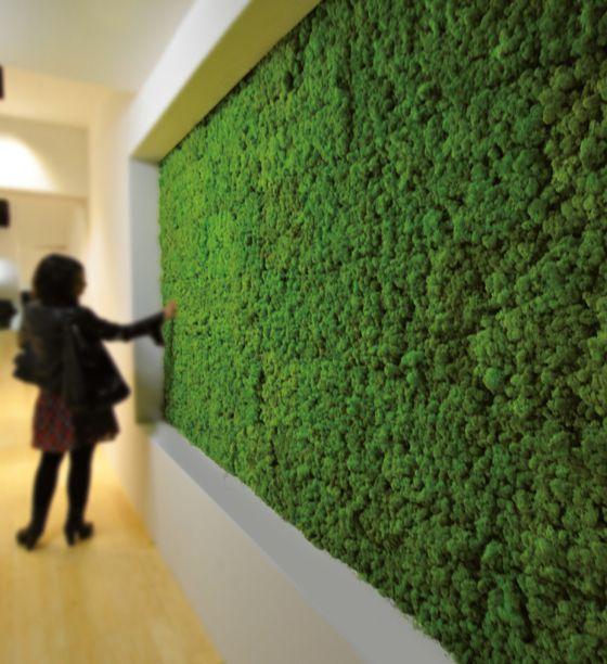 Besser als die Natur: Technisch optimierte Naturwerkstoffe mit herausragenden Eigenschaften